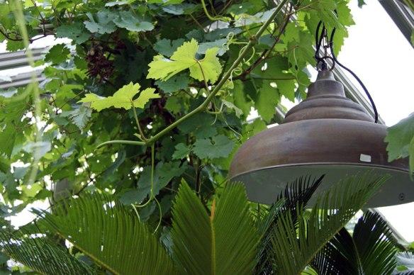 lampa.vacker