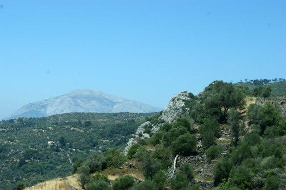 hogt-berg